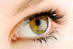 Vědci tvrdí, že barva očí o vás prozradí všechno - Moc vědomí Hazel Color, Hazel Green, Green Eyes, Eye Color, Hazel Eye Makeup, Eye Makeup Tips, Makeup Videos, Makeup Eyes, Black Hair Hazel Eyes