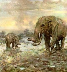 Zdeněk Burian - Platybelodon