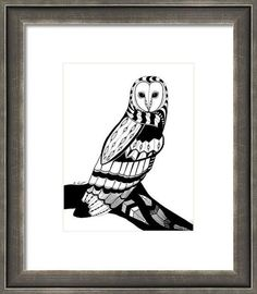 Owl Black Pen and Ink Canvas Print 8 x 10 Native by jargenink