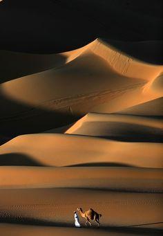【2月27日 AFP】私が初めて砂漠を目にしたのは2006年。