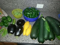 Leave for a week and came home to jumbo zucchini and other goodies.