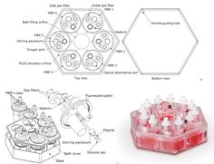 telstar bioreactor - Google 검색