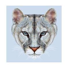 Illustrative Portrait of a Mountain Lion on Blue Background. Cuguar Cat…