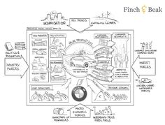 Sustainable Innovation in BMW's Business Model Canvas | Finch & Beak Consulting