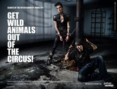 Tokio Hotel - Animal Rights Activist and Pro-Veg