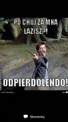 Memy z anime! Harry Potter Books, Harry Potter Fandom, Harry Potter Memes, Funny Photos, Funny Images, Funny Mems, Pokemon, Foto Art, Wtf Funny