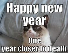 Read some of the best jokes about bingo. Some quick-fire bingo jokes and some great anecdotal ones. Funny New Years Memes, New Year Jokes, Funny Grumpy Cat Memes, Funny Jokes, Hilarious, Grumpy Kitty, Bingo Meme, Comedy Pictures, Get Off My Lawn