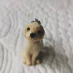 5cm-llavero Instagram Accounts, Teddy Bear, Photo And Video, Animals, Ideas, Key Fobs, Porcelain Ceramics, Dogs, Animales
