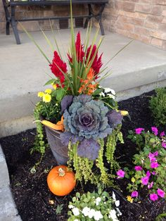 Red and orange Celosia, yellow and white mums, purple cabbage, spike grass and gourds. Fall Container Plants, Fall Containers, Container Flowers, Container Gardening, Mum Planters, Planter Ideas, Fall Flowers, Orange Flowers, Celosia Flower