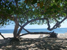 Villa Tropico (Cameleon Villa Jibacoa) - UPDATED 2017 Prices, Reviews & Photos (Cuba) - Resort - TripAdvisor Cuba Resorts, Varadero Cuba, Hotel Reviews, Trip Advisor, Villa, Outdoor Decor, Photos, Travel, Viajes