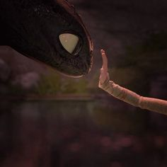 "Favorite moment in ""How to Train Your Dragon""!"