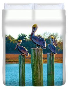 Pelican Duvet Cover featuring the photograph Keeping Watch by Cynthia Guinn