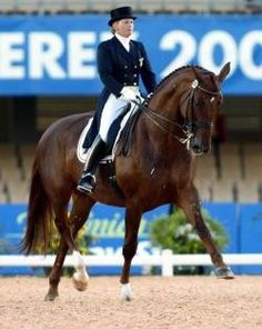 Debbie MacDonald and Brentina: Proving you don't have to be a 6 foot tall German man to ride dressage