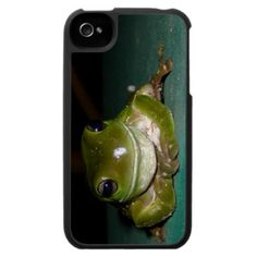Smiling Frog iPhone Case by JeanettesOzpix