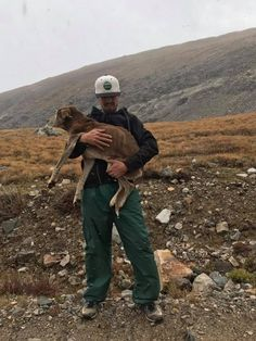 Senior Dog Believed To Be Dead After Going Missing Is Found Stranded On A Mountain 6 Weeks Later