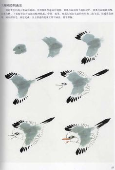 Ce sont les étapes pour faire un oiseau et il se peut que j'en incorpore un dans ma peinture. Cependant, le plus important de cet oeuvre est la technique qui se trouve derrière, car elle nous montre que nous devons commercer par les grosses formes et finir par les détails. L'important est donc de travailler sa forme dans son entier et non par partie. Sumi E Painting, Japan Painting, Ceramic Painting, Chinese Painting, Watercolour Painting, Japanese Drawings, Bird Drawings, Japanese Art, Japanese Watercolor