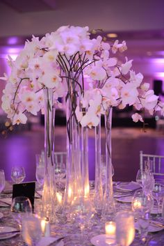 Tall orchid centerpiece with purple uplighting.