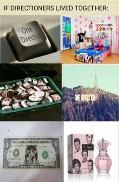 Guys lets make a directionet city come on! Then can do concerts there too and if we make them lol ok but srsly with one direction and two directions as dollars and omfg I can already imagine it lol One Direction Memes, I Love One Direction, X Factor, James Horan, 1d And 5sos, 5 Seconds Of Summer, Cool Bands, A Team, My Boys