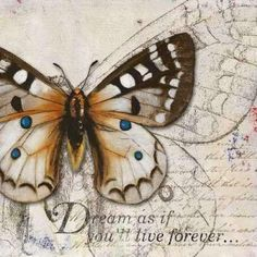Patricia Pinto Solid-Faced Canvas Print Wall Art Print entitled Living your Dreams I Wall Art Prints, Poster Prints, Canvas Prints, Framed Prints, Posters, Framed Art, Vintage Butterfly, Blue Butterfly, Butterfly Drawing
