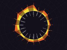 Radial Infographic | Data Visualization Design