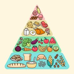 Discover thousands of Premium vectors available in AI and EPS formats My Pyramid, Food Pyramid, Proper Nutrition, Nutrition Pyramid, Food Nutrition, Preschool Crafts, Crafts For Kids, Bubble Tea, School Design