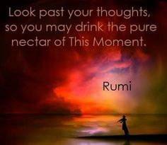 Look past your thoughts, so you may drink in the pure nectar of This Moment.- Rumi