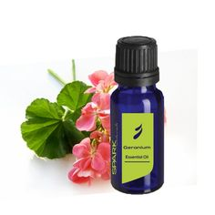 Spark Naturals Oil of the Month is: GERANIUM!  Sign up today and get a selected 15ml bottle of EO sent your way each month for only $15.99!! {price includes shipping too!}
