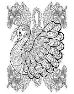 Coloring Poster Swan Amaryllis Design Art 54x36in