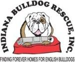 Home - Indiana Bulldog Rescue