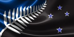 Best Design Option   1. Since black is the national colour of New Zealand, the New Flag should have black colour in the background,    2. If the Flag has half black background, why not adding blue stars, because it represent the natural environment; the night has blue stars and black sky. It creates natural pleasure to human visual sense.  3. There is no need for red colour in NZ flag, we're not communist state, it only create disturbance to our vision.