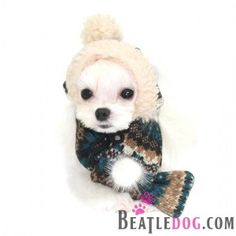 beatledog puppyzzang dog inca inspired knit hat or scarf