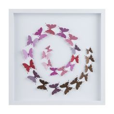 40 x 40cm Framed Chocolate & Berry Butterflies