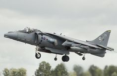RAF Harrier Jump jet. Wikipedia / Public Domain