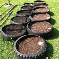 My freshly planted tire garden!