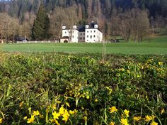 Rund um Schloss Höch in Flachau wird es Frühling  Springtime at Höch Castle in Flachau Salzburg, Visit Austria, Heart Of Europe, Central Europe, Alps, Switzerland, Vacation, Luxury, Places