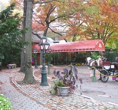 Tavern on the Green Restaurant- Central Park- Upper West Side of Manhattan in New York City. Was there before it closed :( Upper West Side, East Side, Places To Travel, Places To Go, Park Tavern, Greens Restaurant, Tavern On The Green, A New York Minute, Urban Park