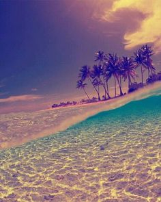 #ocean paradise #vacation #takeme #relax #beautiful #photography