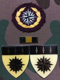 1 Special Forces Regiment - I knew some buddies who were recces different bunch of guys