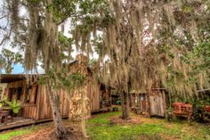Spooky Florida Cabin