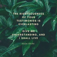 The righteousness of Your testimonies is everlasting, give me understanding and I will live. Psalm 119:14 #NKJV . The Word Psalm! Have you ever just read it straight through, praying as you go, allowing a hunger for His Word to grow in you?  #Regram via @www.instagram.com/p/CBFNTwGFlx_/ Encouraging Verses, Bible Verses, Psalm 119, Psalms, Verses About Love, Righteousness, Book Club Books, Word Of God, Christian Quotes