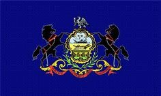 Pennsylvania State Flag 3x5 New Large Flags US PA USA by NEOPlex. $4.99. Vivid graphics & colors. Easy flag pole attachment. Super Polyester for long lasting durability. 2 brass grommets firmly attached to heavy canvas on inner fly side. Color fast to reduce fading. This 3 x 5 foot USA State flag is made from super polyester that is durable, yet lightweight enough to fly in even the lightest breeze. It has 2 brass grommets firmly attached to heavy canvas on the...