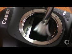 Sensor Cleaning: Stay Focused with Doug McKinlay | Expert photography blogs, tip, techniques, camera reviews - Adorama Learning Center