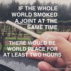 Cannabis has been used by humans for thousands of years. It is also referred to as weed. Cannabis is also used to make hemp. Stoner Quotes, Weed Quotes, Funny Quotes, 420 Quotes, Funny Memes, Weed Humor, Puff And Pass, Smoking Weed, Ganja