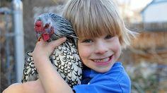 Boy and Chicken