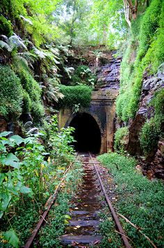 Abandoned Helensburgh Railway Station by Tom Jarman Abandoned Buildings, Abandoned Places, Abandoned Cars, Foto 2560x1440, Train Tunnel, Old Trains, Train Tracks, Fantasy Landscape, Belle Photo