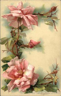 """E"" Vintage Floral Postcard by Catherine Klein"