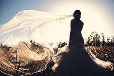 Photo shoot with the amazing Miles Witt Boyer. #veil #bridal #styled #bridals #photography #lazaro