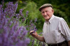 A bükki füvesemberként ismerik sokan Szabó Gyuri bácsit, aki 81 éves korára is majd kicsattan az egészségtől. A természettel és a gyógynövényekkel kapcsolatos több évtizedes tudását szívesen megosztja másokkal is.  Őseitől szellemi örökségül kapta tudományát.