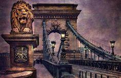 the lion by Nikoletta Kolozs