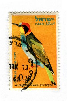 Israel Postage Stamp: Merops by karen horton, #bird #illustration